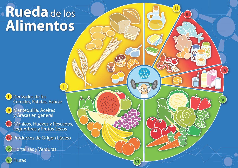 clasificacion de los alimentos ruleta