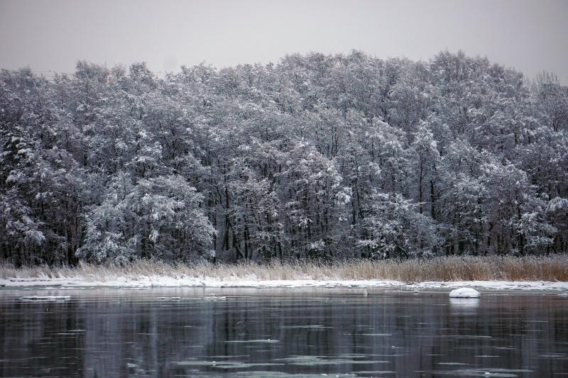 lumi, talvi, lumipyry, tammikuu_2019