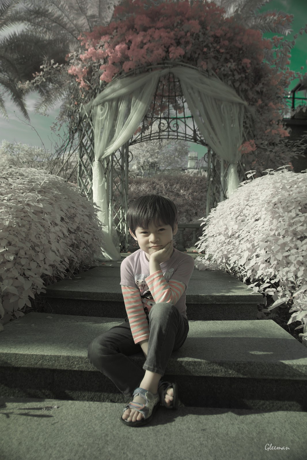 彩色紅外線攝影 (Pentax K5 Color IR Photography)