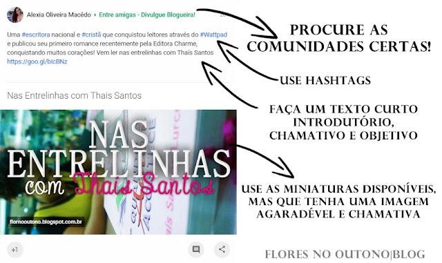 Como divulgar o blog no Google+
