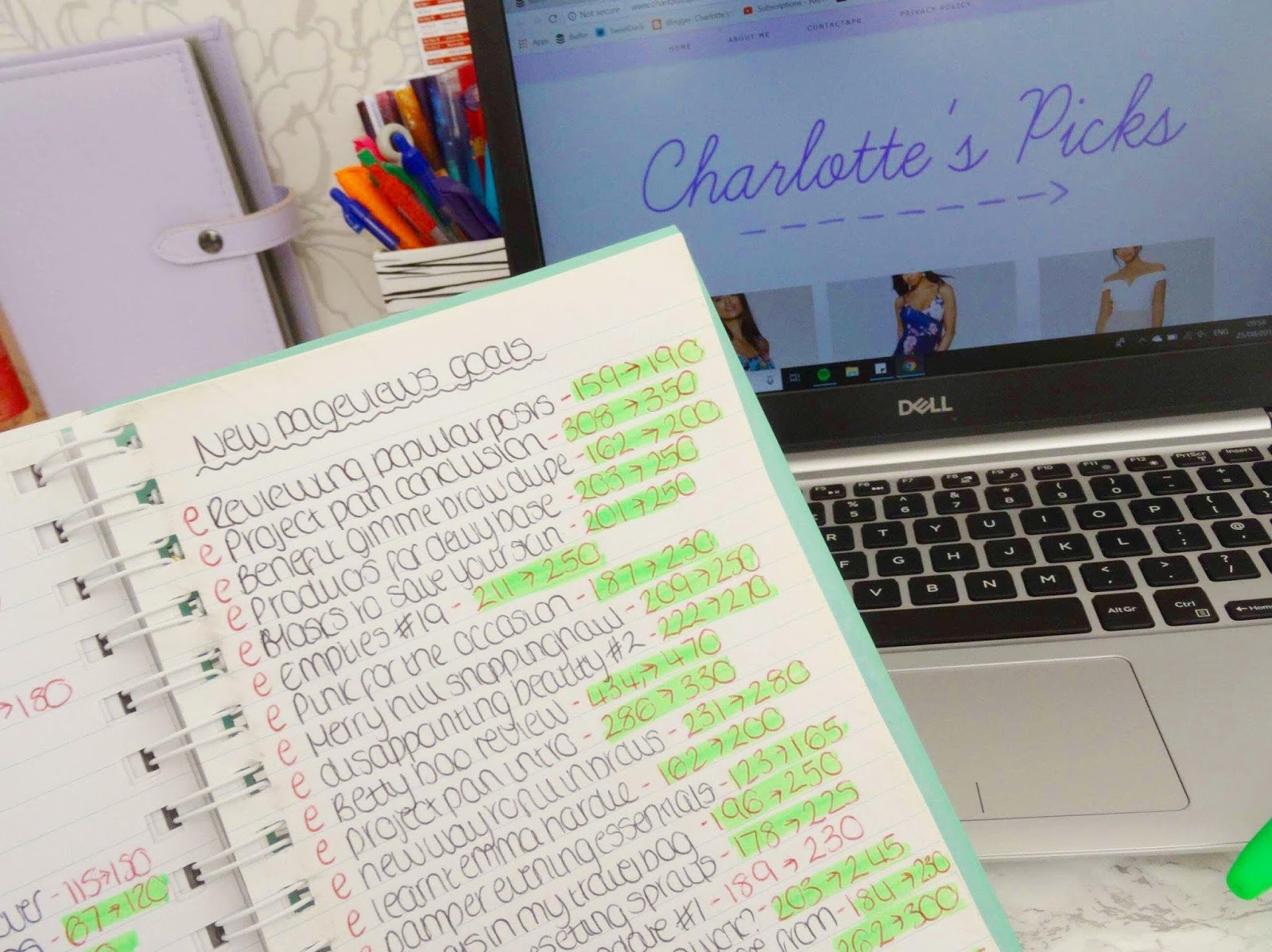 Page View Goals Set on Charlotte's Picks' Blog