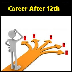 Career After 12th