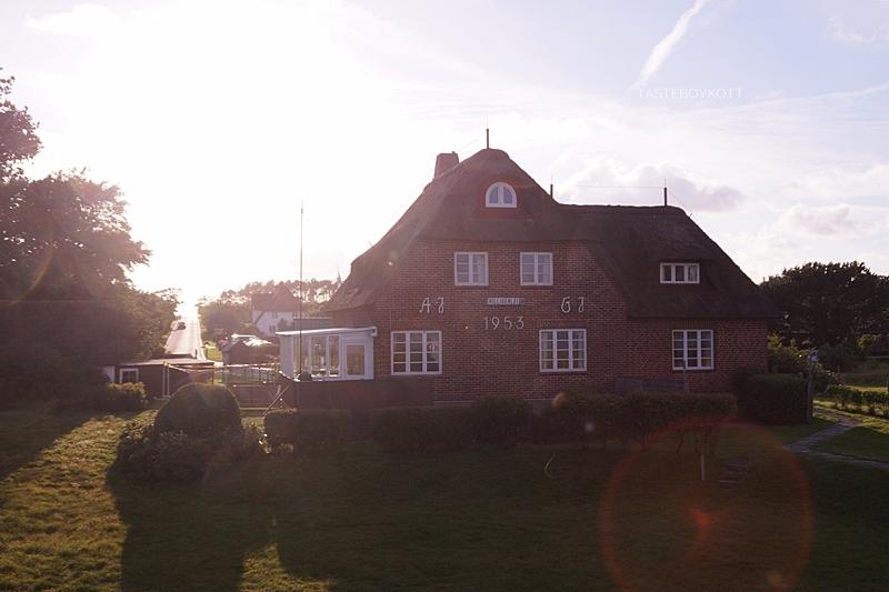 Amrum Deich Reetdachhaus Sommer Sonnenuntergang