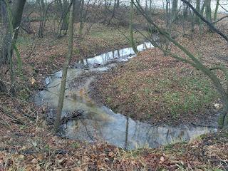 rzeka ślęża meandry