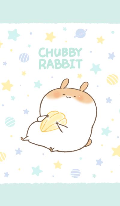 Chubby Rabbit