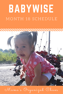 Eat Wake Sleep Cycle Month 18 Babywise
