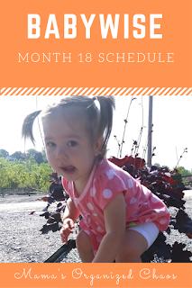 Eat Wake Sleep Cycle Month 18 Babywise