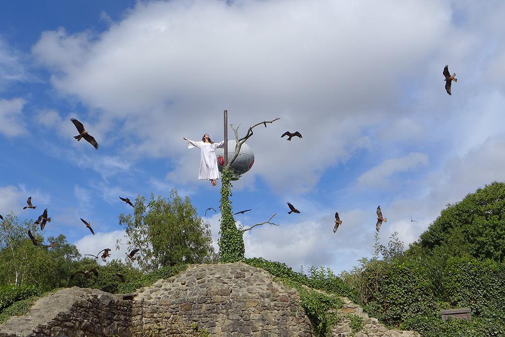 le bal des oiseaux du puy du fou