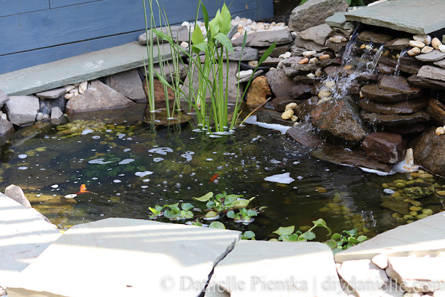 Backyard garden pond setup.