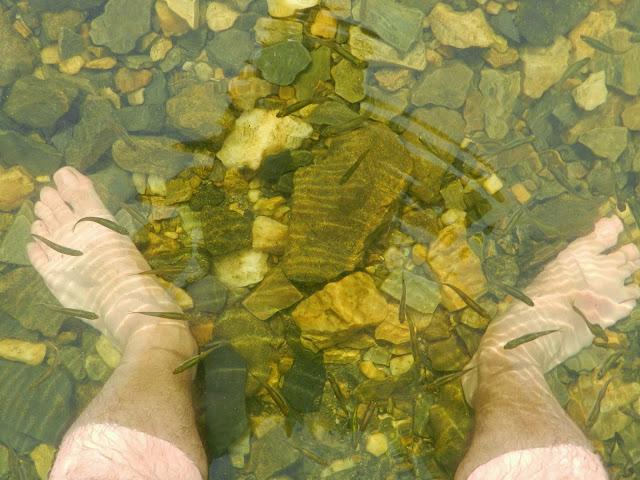 Мальки в прозрачной воде озера Малые Касли