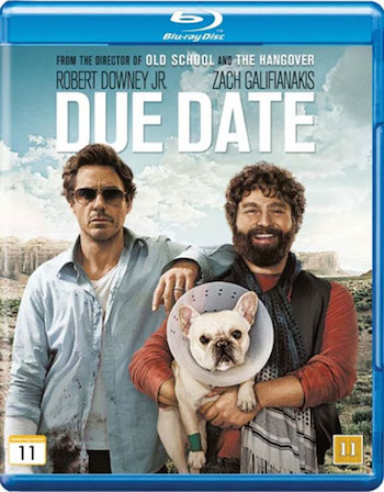 Due Date 2010 Dual Audio Hindi 720p BRRip 900mb