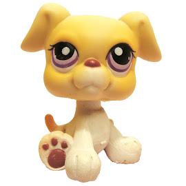 Littlest Pet Shop Tubes Boxer (#451) Pet