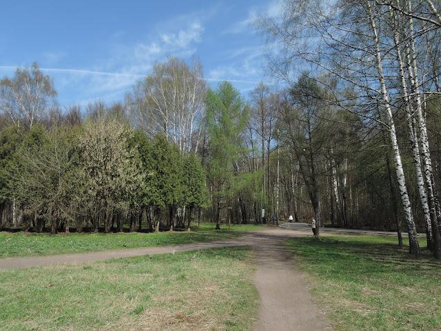 Измайловский парк в мае