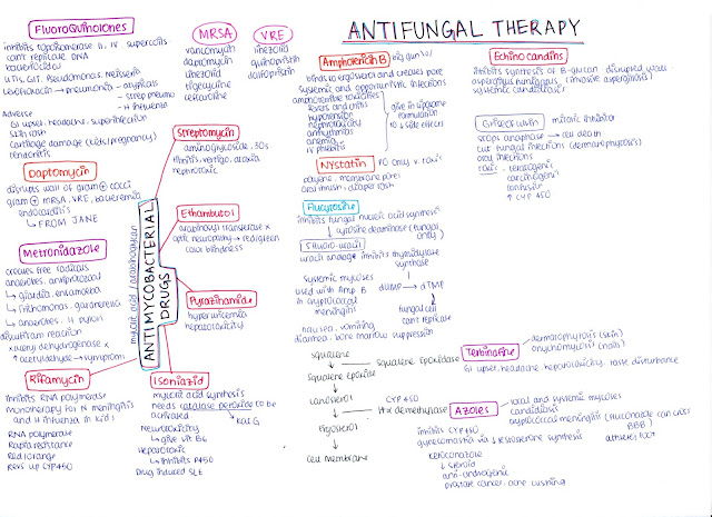 The Complete Guide on How to Study Pharmacology in Med School. Written by the average med student. Click here to read more about study tips, med school, USMLE and more! https://writtenbykanra.blogspot.com/2018/02/the-complete-guide-on-how-to-study.html