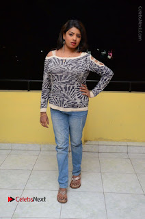 Actress Sridevi Stills in Jeans at No 1 Hero Rajendra Press Meet  0104.JPG