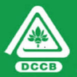 krishna-dccb-recruitment-career-apply-online-govt-bank-jobs
