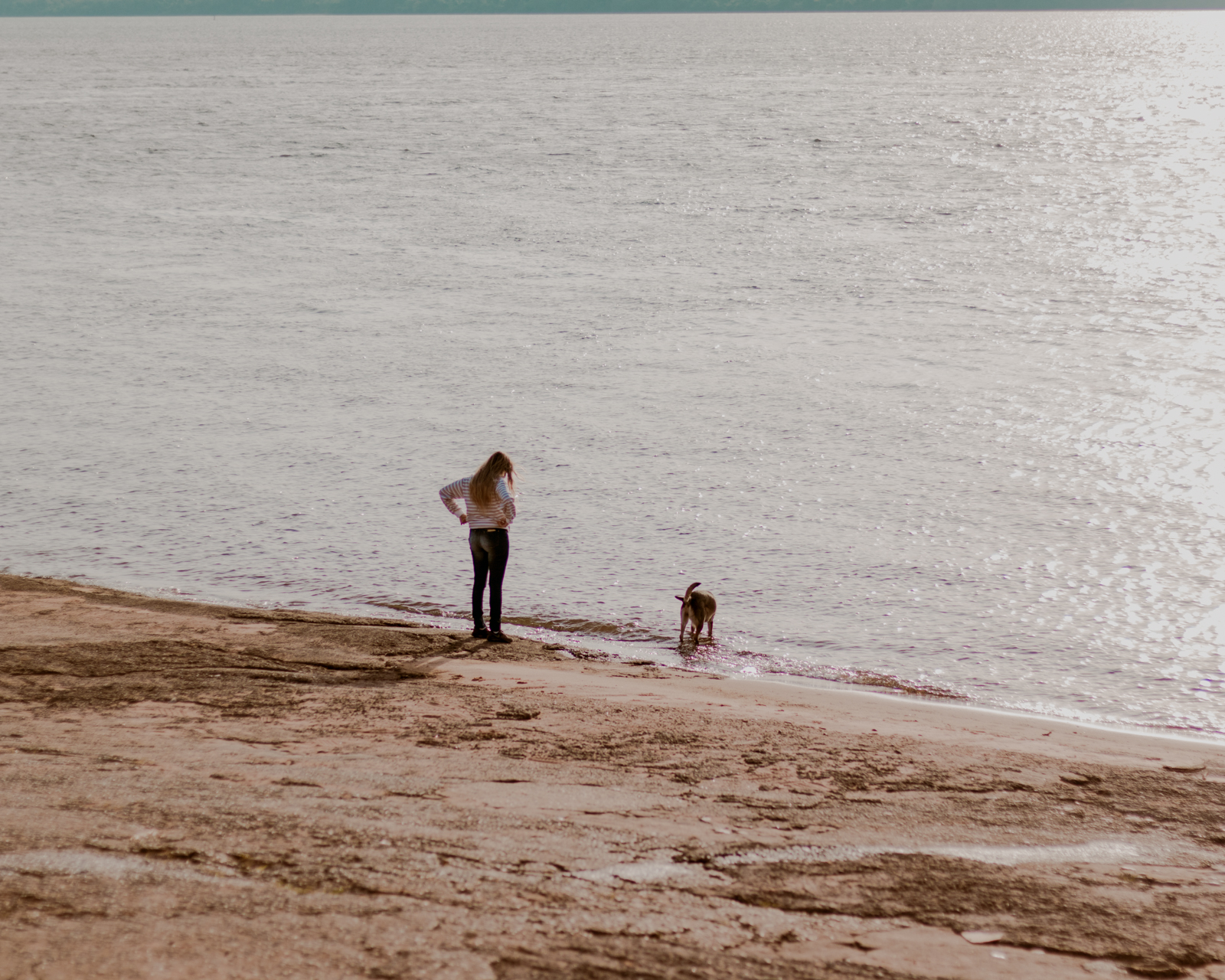 menina e cachorro andando na praia