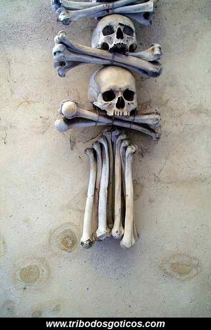 ossário,arte,caveira,ossos