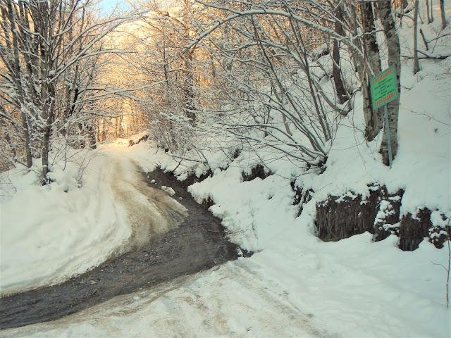 Дорога на Хмелевские озера, зима, Сочи, Красная поляна 2016