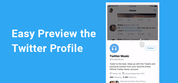 Twitter easy the profile preview without leave timeline.