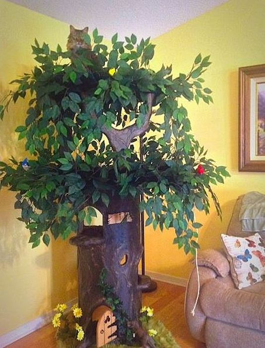 Ultimate Cat Trees