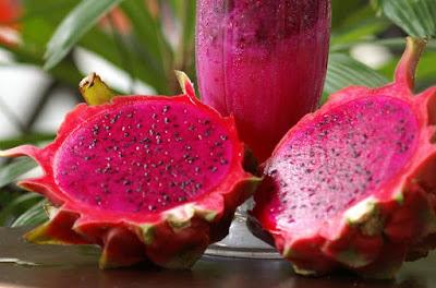 Cara mengolah kulit buah naga jadi obat herbal