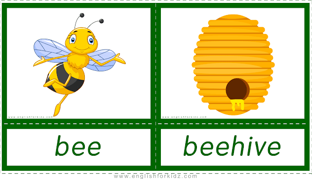 Animal homes and habitats -- bee - beehive -- printable flashcards for English learners
