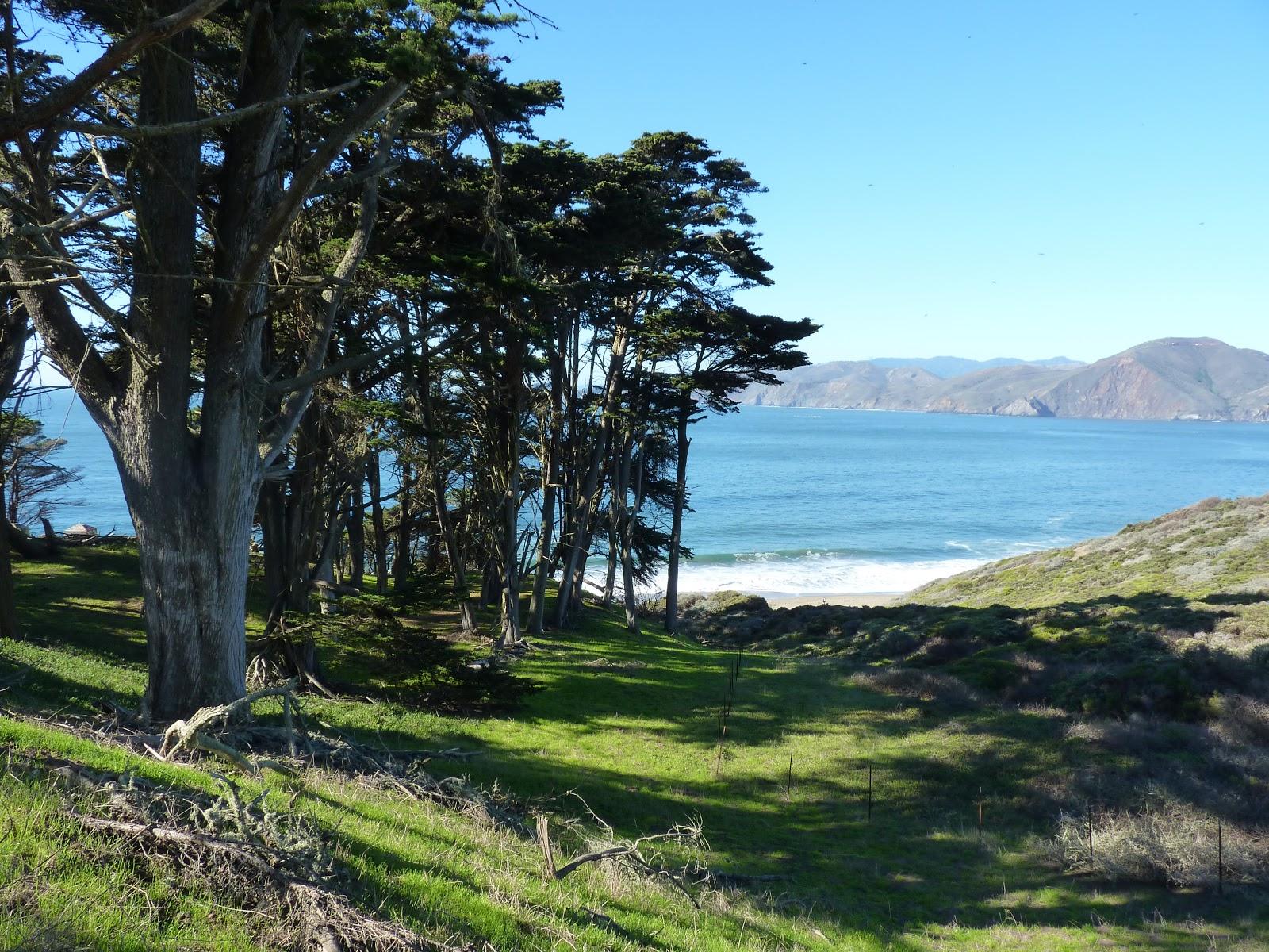 Presidio Park, San Francisco