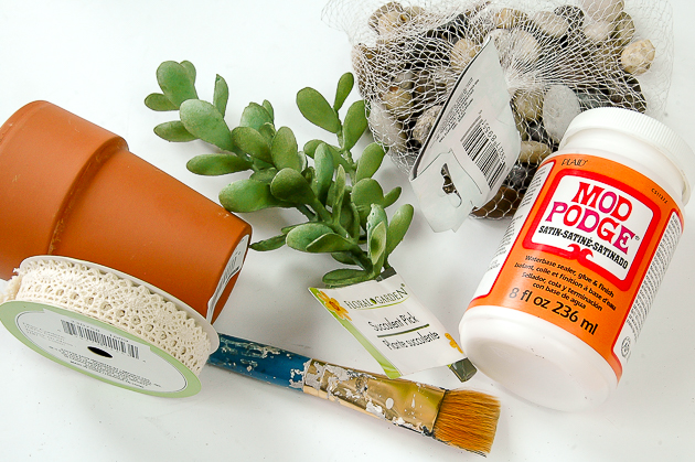 Supplies for Dollar Tree succulent pots