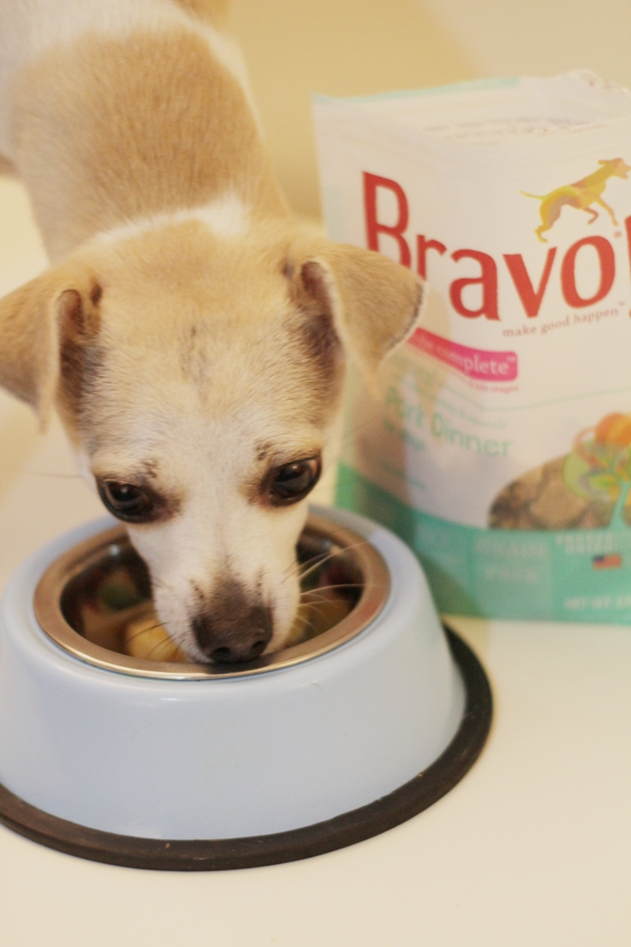 Bravo Raw Dog Food Homestyle Complete Dinners Review