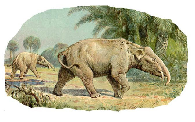Gambar Rekonstruksi Palaeomastodon
