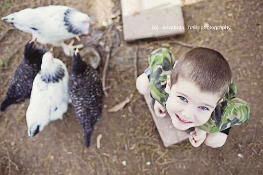 Elizabeth Hall Photography: Boys and Chicks