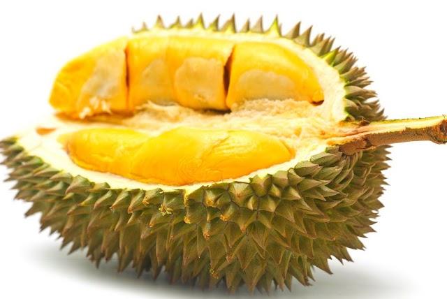 Kelebihan Buah Durian Yang Tidak Diketahui Ramai