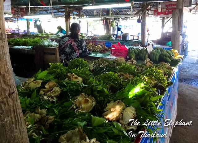 Jungle Market in Lamphun, Thailand