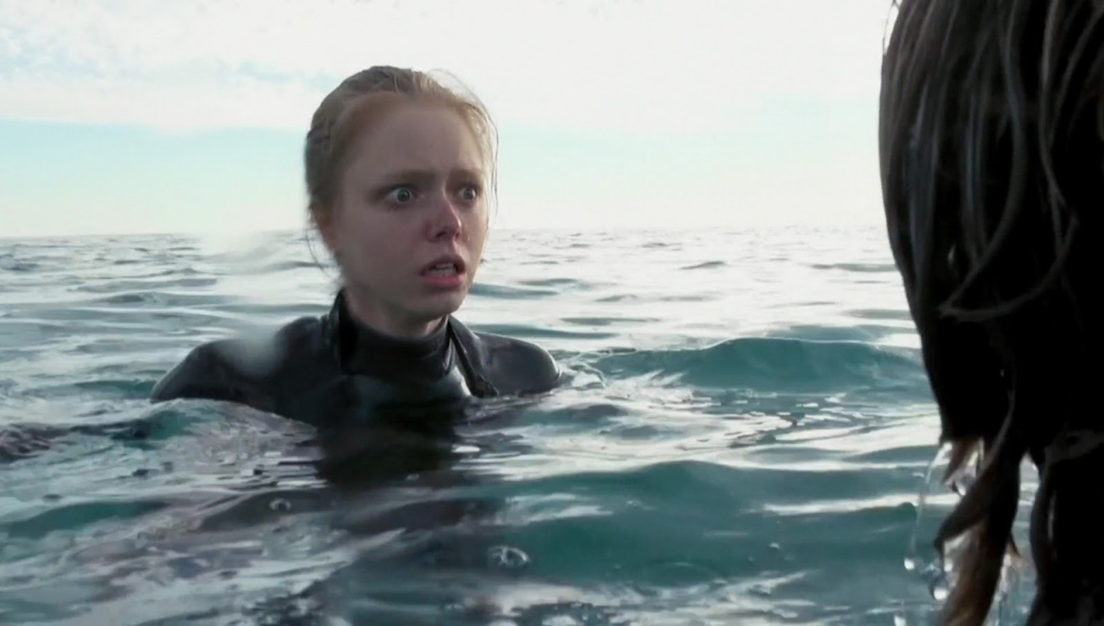 Cinehouse open water 3 cage dive 2017 review by sandra harris - Open water 3 cage dive ...