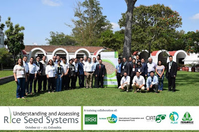 Understanding and assessing rice seed systems: A training collaboration of IRRI and CIAT/FLAR