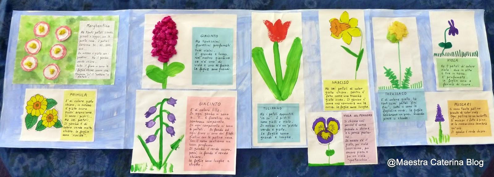Maestra Caterina Lapbook Fiori Di Primavera