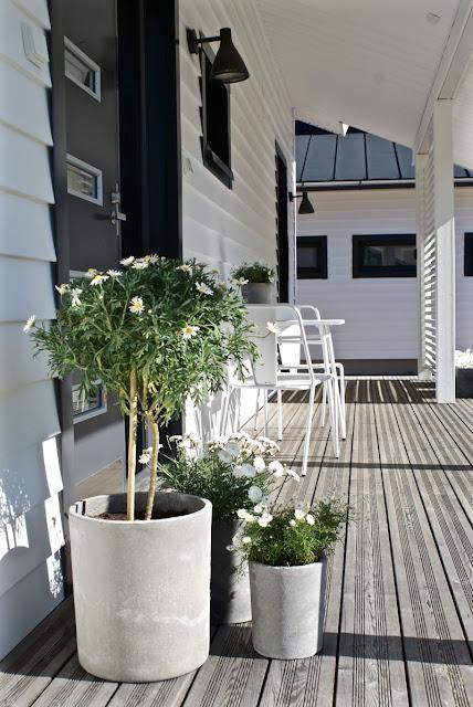 zicos.fi, zicos, kukat, kesäkukat, rimoitus, lehtikuusi, moderni piha, valkoinen koti, marketta, ruukku