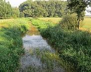 Afbeelding  1. Opname vanaf de kant  van Lage Raam nabij Mill, 15 september 2016. Vegetatie die de waterstroming kan beïnvloeden is duidelijk zichtbaar (foto: Gé van den Eertwegh). In: Dotterproject: risicogestuurd maaibeheer door betere kennis van vegetatie