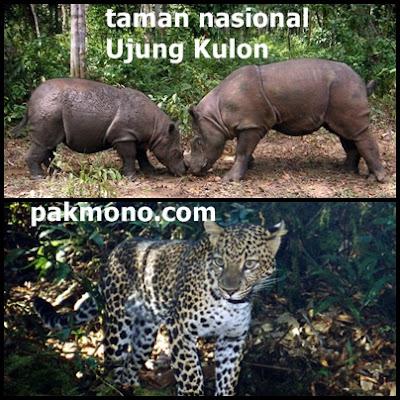 Cagar alam dan suaka margasatwa di pulau Jawa