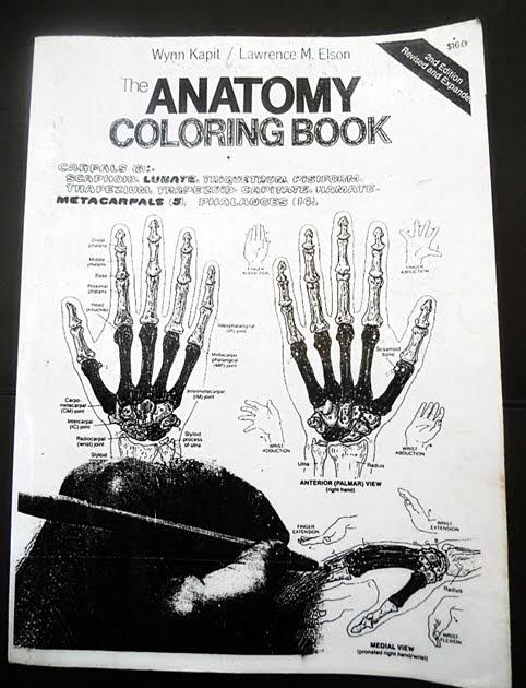 Anatomy Coloring Book 3rd Edition Wynn Kapit Pdf Geography