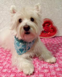 Blue Valentine Hearts Bandana Collar Slipcover
