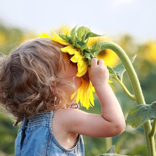 Take Time to Smell the Roses - ParentUnplugged - Stacy Snyder