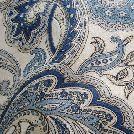 Blue Paisley Rugs Area Rug Ideas