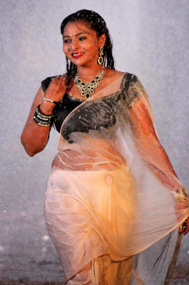 Hot South Indian Aunty In Wet Saree Pics  Mallu Aunties Hot-4965