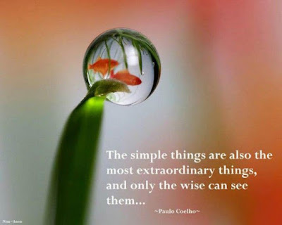 most beautiful the simple things are also the most extraordinary things,