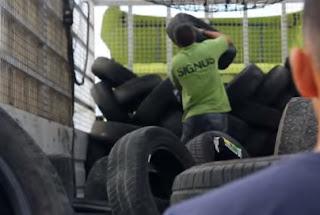 Signus gestionó casi 200.000 toneladas de neumáticos fuera de uso en 2016