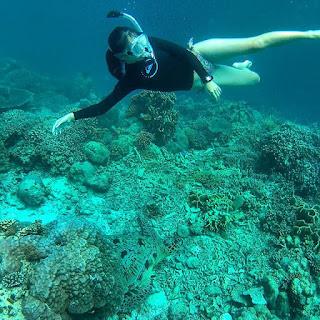 Borneo-Holidays-Timba-Timba-1-0-4-640x640