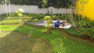 Tukang Taman Murah Di Bogor