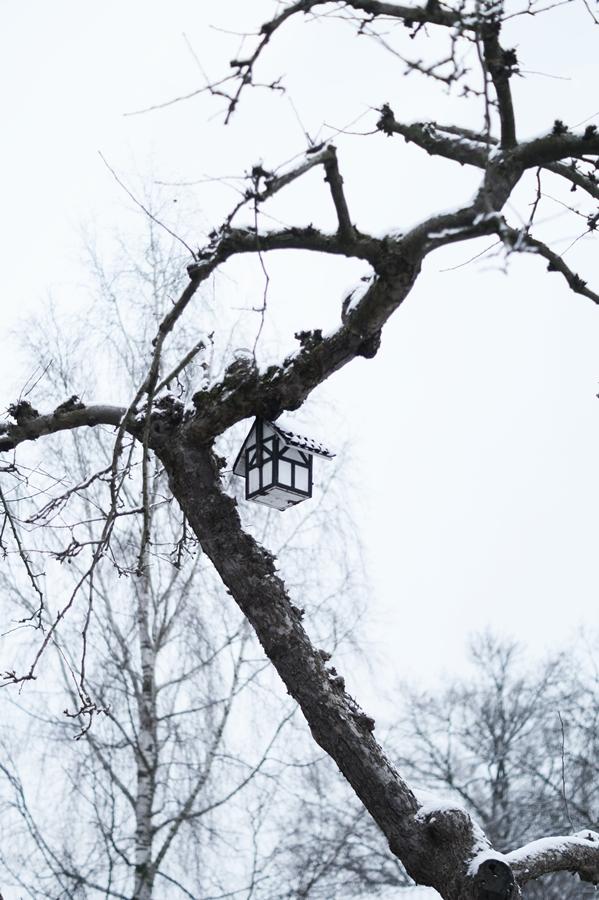 Blog + Fotografie by it's me! - Draussen - Frau Frieda sucht Schnee, Vogelhause im schneebedeckten Baum